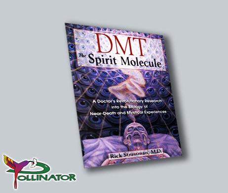 DMT - The Spirit Molecule