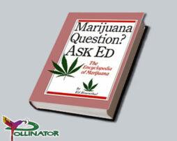 ask-ed-book