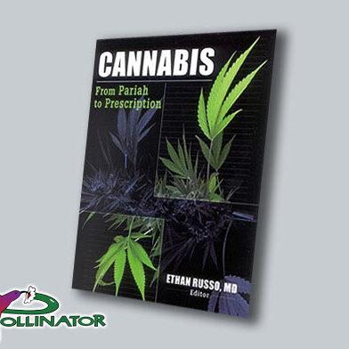 Cannabis From Pariah to Prescription