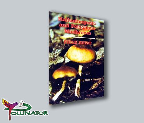 hallucinogenic poisonous mushroom field guide pollinator amsterdam rh pollinator nl Leaglity Hallucinogenic Mushroom hallucinogenic and poisonous mushroom field guide pdf